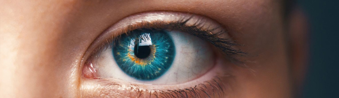 Gezwollen ooglid, oorzaak van gezwollen oogleden, wat kan ik doen tegen gezwollen oogleden. Hoe werkt het oog, anatomie van het oog, hoornvlies, netvlies, ooglens
